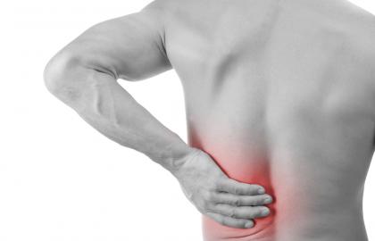 כאבי גב תחתון – הקללה של אנשי המשרד